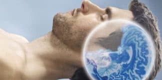 sommeil cerveau dormir