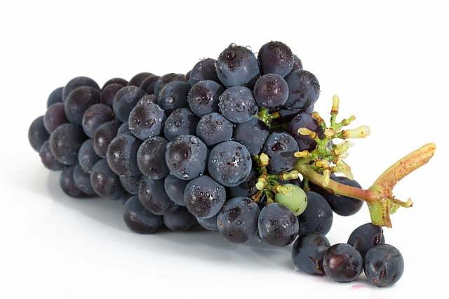 Grape de raisin